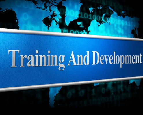 Training and development OR
